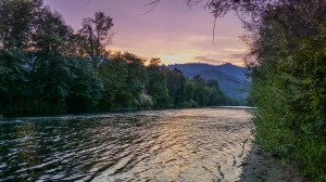 Click for the Rogue River Gallery