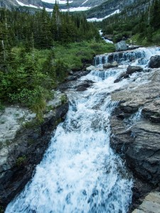 Mountain Stream - Logan's Pass